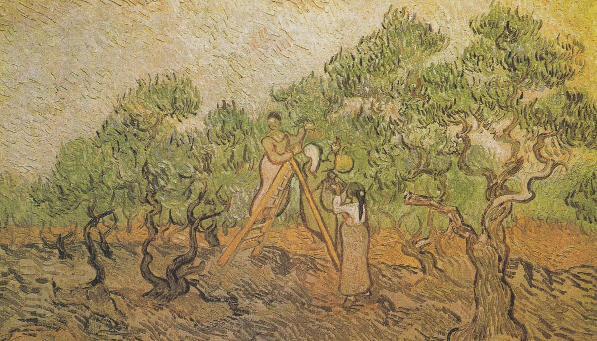 Pintura olivos